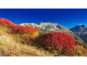 山岳レイアウト2