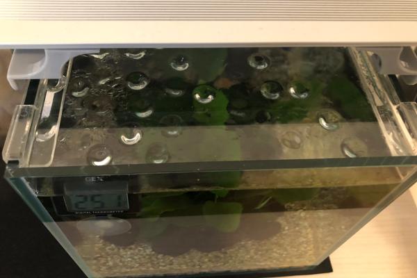 水槽の隙間1
