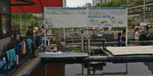 釣り堀の看板