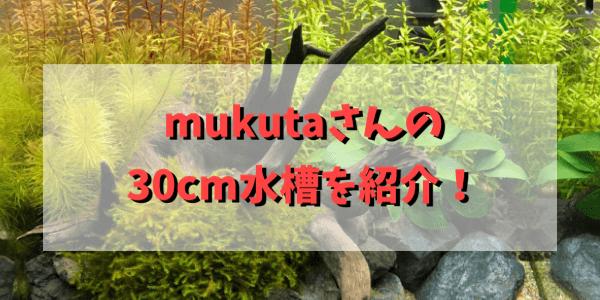 mukutaアイキャッチ