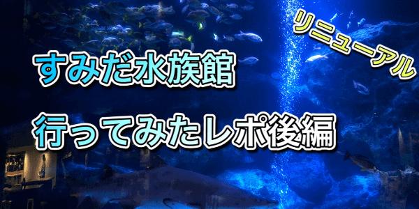 すみだ水族館レポ後編アイキャッチ
