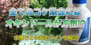 藍藻やアオミドロの対策にオキシドールを使った記事のアイキャッチ