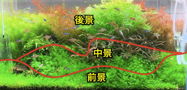 水草レイアウト配置図