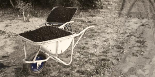 ソイルと土を回収
