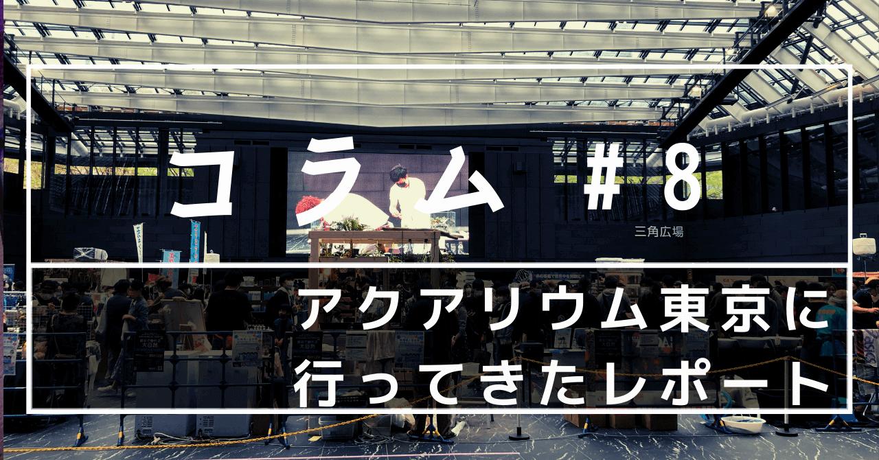 アクアリウム東京に行ってきたレポ