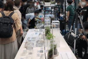 アクアリウム東京コーナー