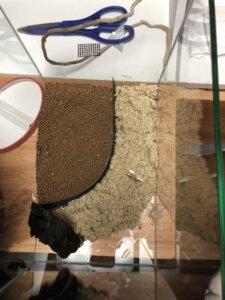 ソイルと化粧砂を入れるシーン