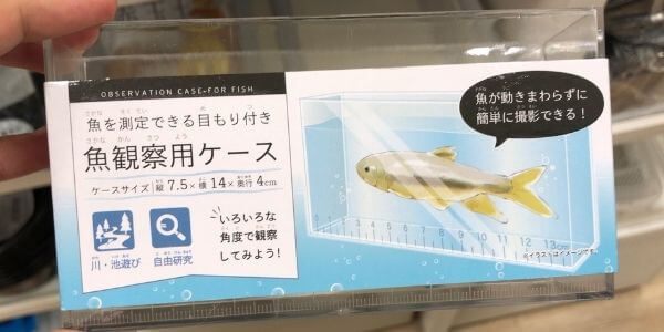 100均魚観察用ケース