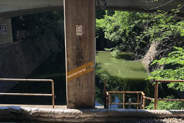 飯田橋駅から見える池