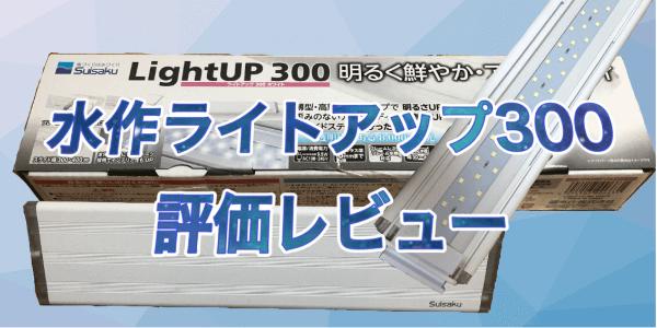 水作ライトアップ300評価レビュー