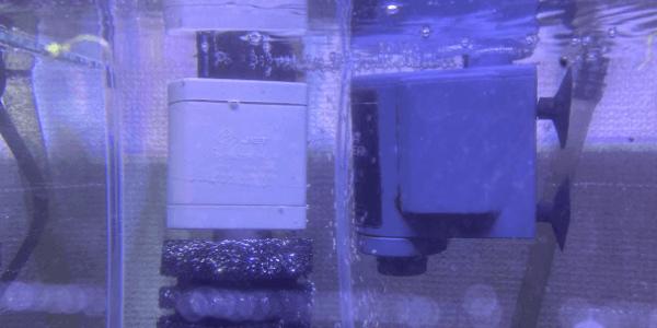 水中モーター比較